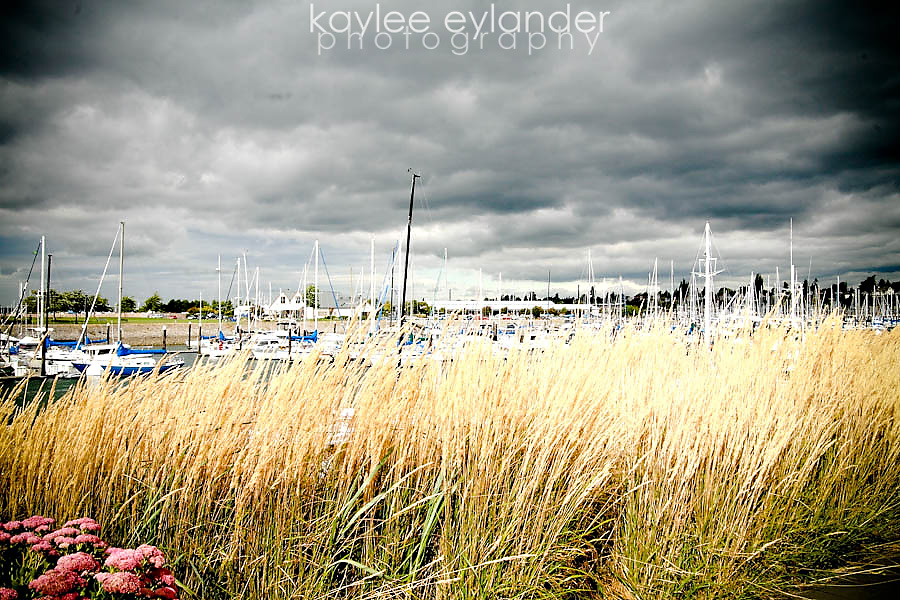 bell wether 4 Bellingham Wedding Photographer | Kaylee Eylander | Hotel Bellwether Wedding