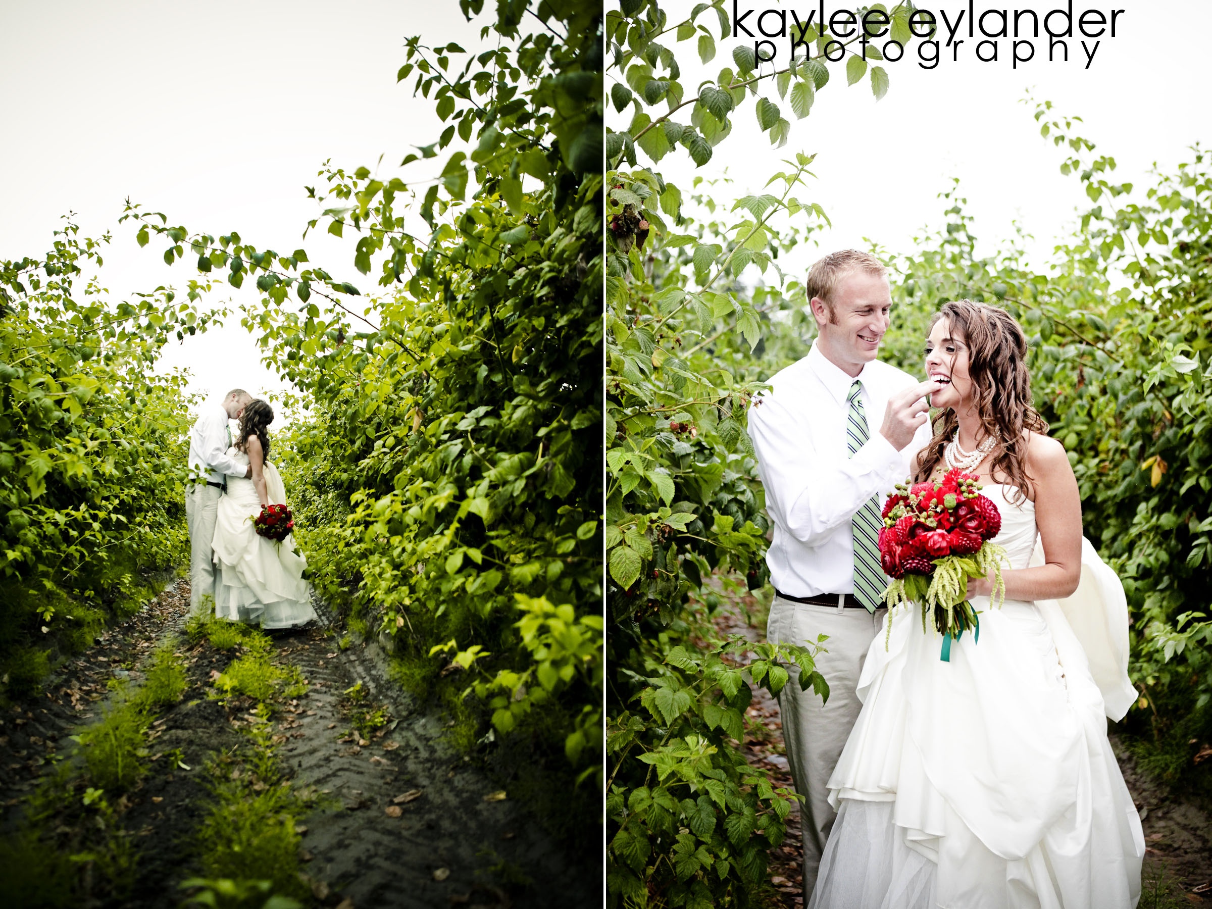 amy Dana web 20 Bellingham (amazing) DIY Wedding | You had me at Tire Swing! | Kaylee Eylander Photography