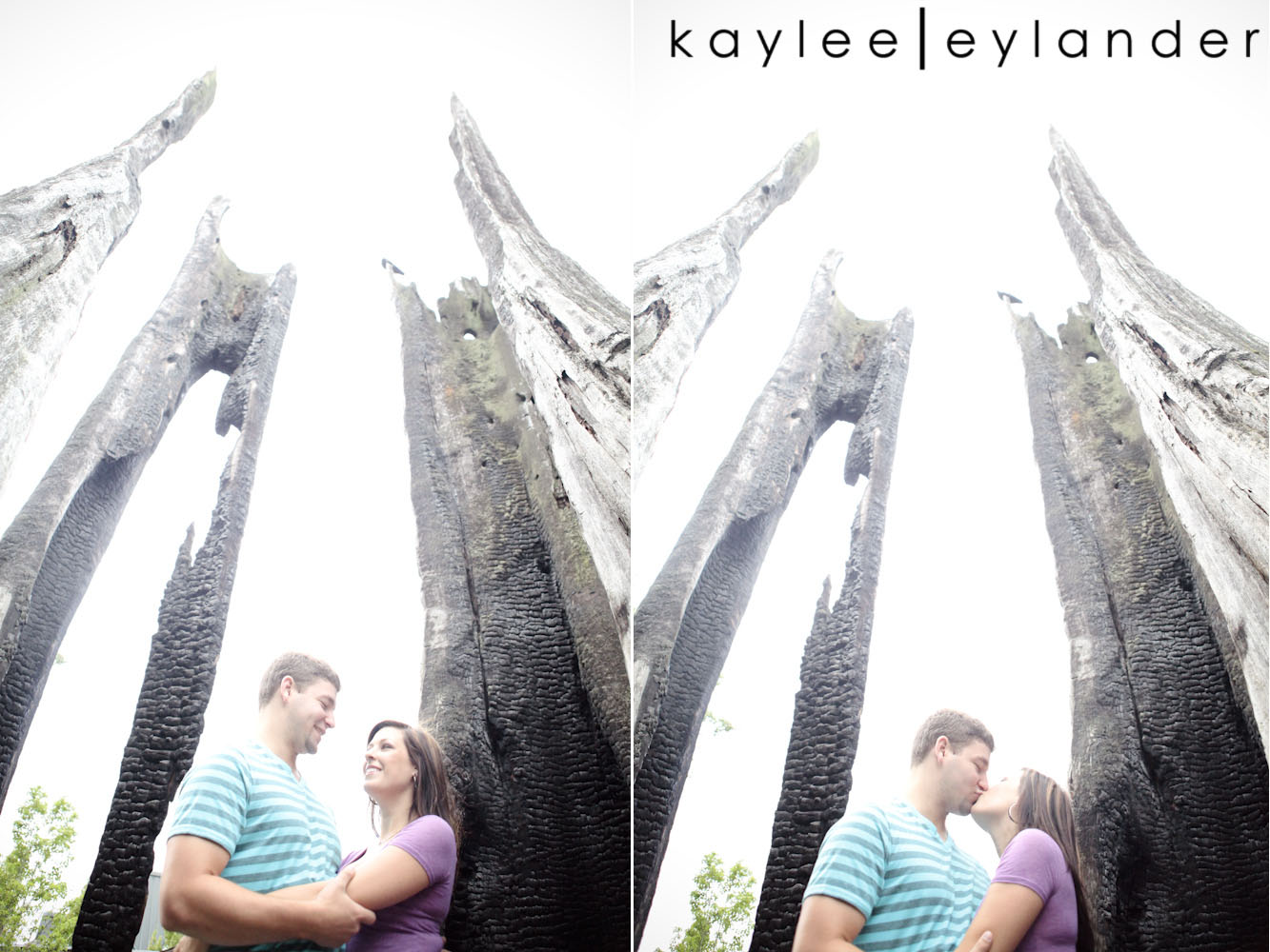 00011 Willows Lodge Engagement Session | Love Birds | Woodinville Wedding Photographer