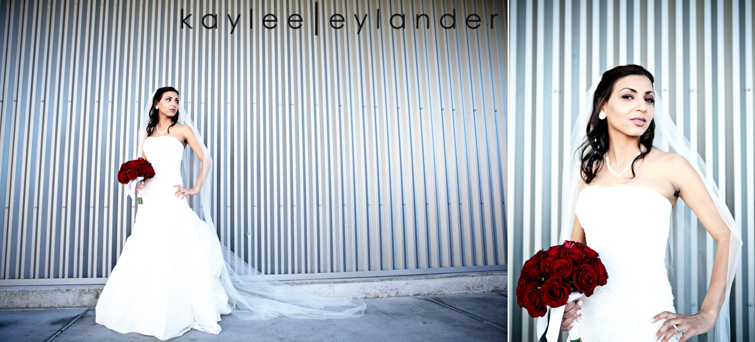 0112 Seattle World Trade Center Wedding | Red Roses and Sunshine!  | Seattle Wedding Photographers