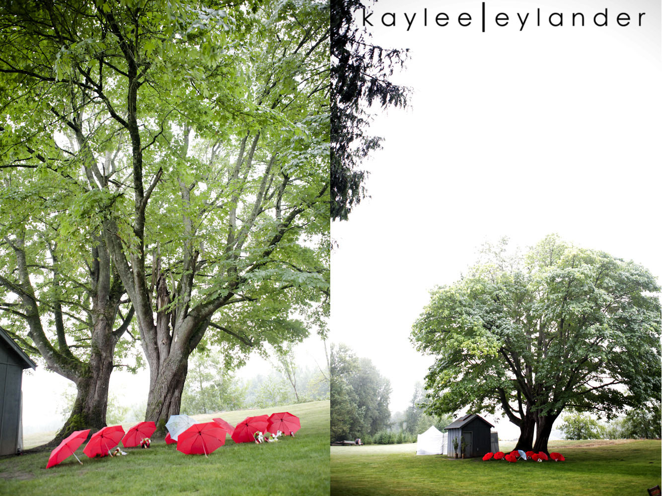 0944 Bellingham DIY Wedding | A Wedding in the rain never looked so good!| Kaylee Eylander