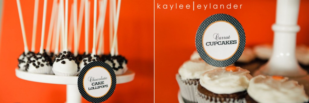 Snohomish Hidden Meadows Wedding Photographer 540 1024x341 Hidden Meadows Wedding | Orange, Ruffles and Polka Dots!
