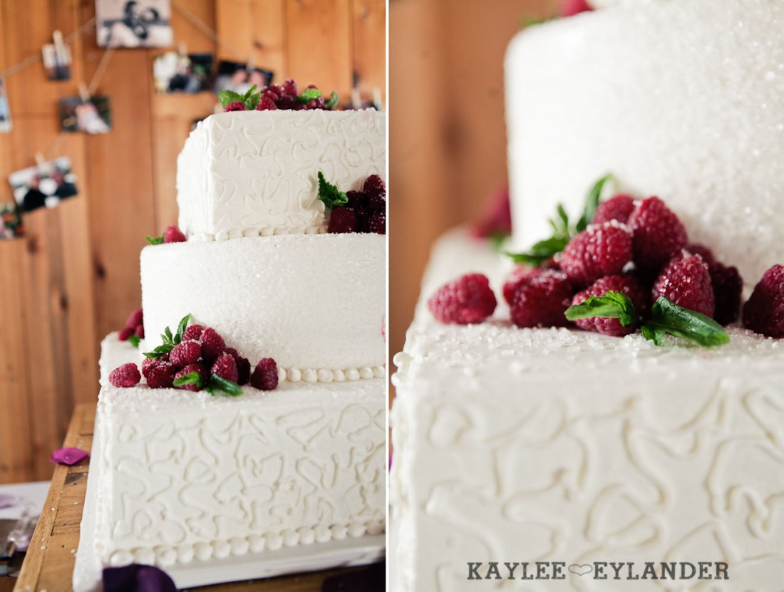Swans Trail Farm Wedding Ceremony 11 1100x831 Swans Trail Farm Wedding | Pears, Raspberries and little white lights