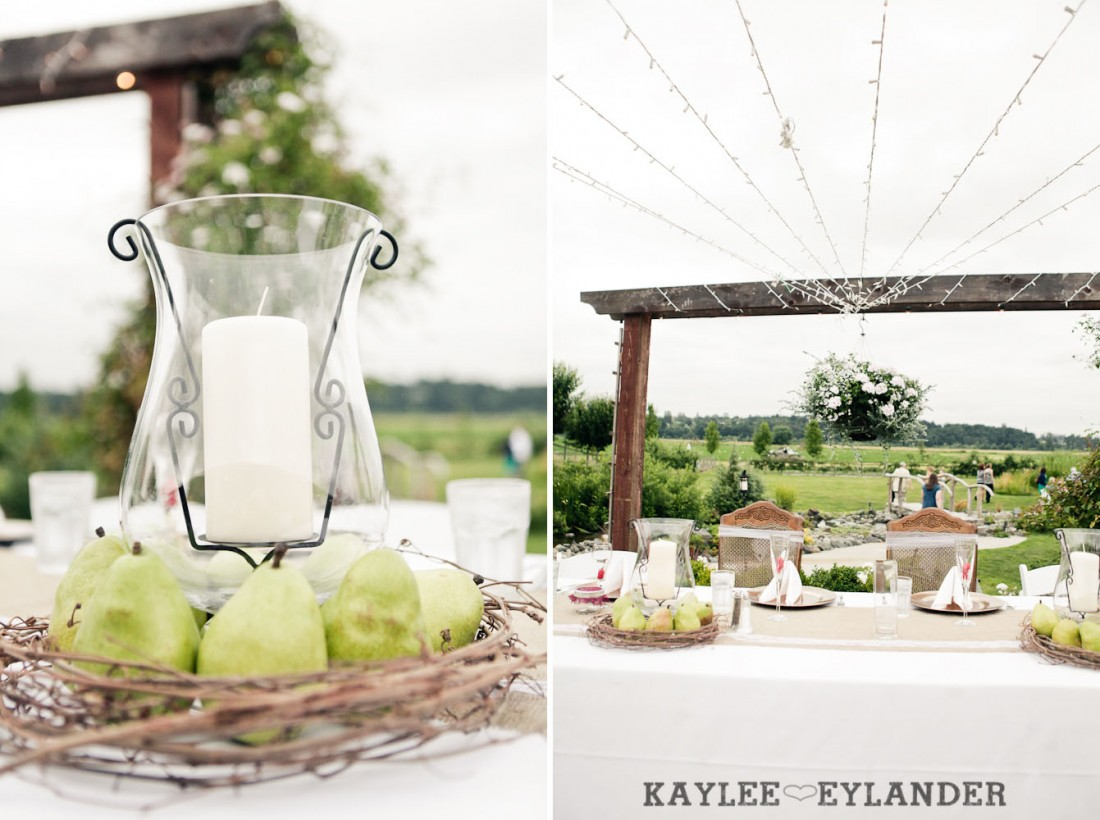Swans Trail Farm Wedding Ceremony 17 1100x820 Swans Trail Farm Wedding | Pears, Raspberries and little white lights