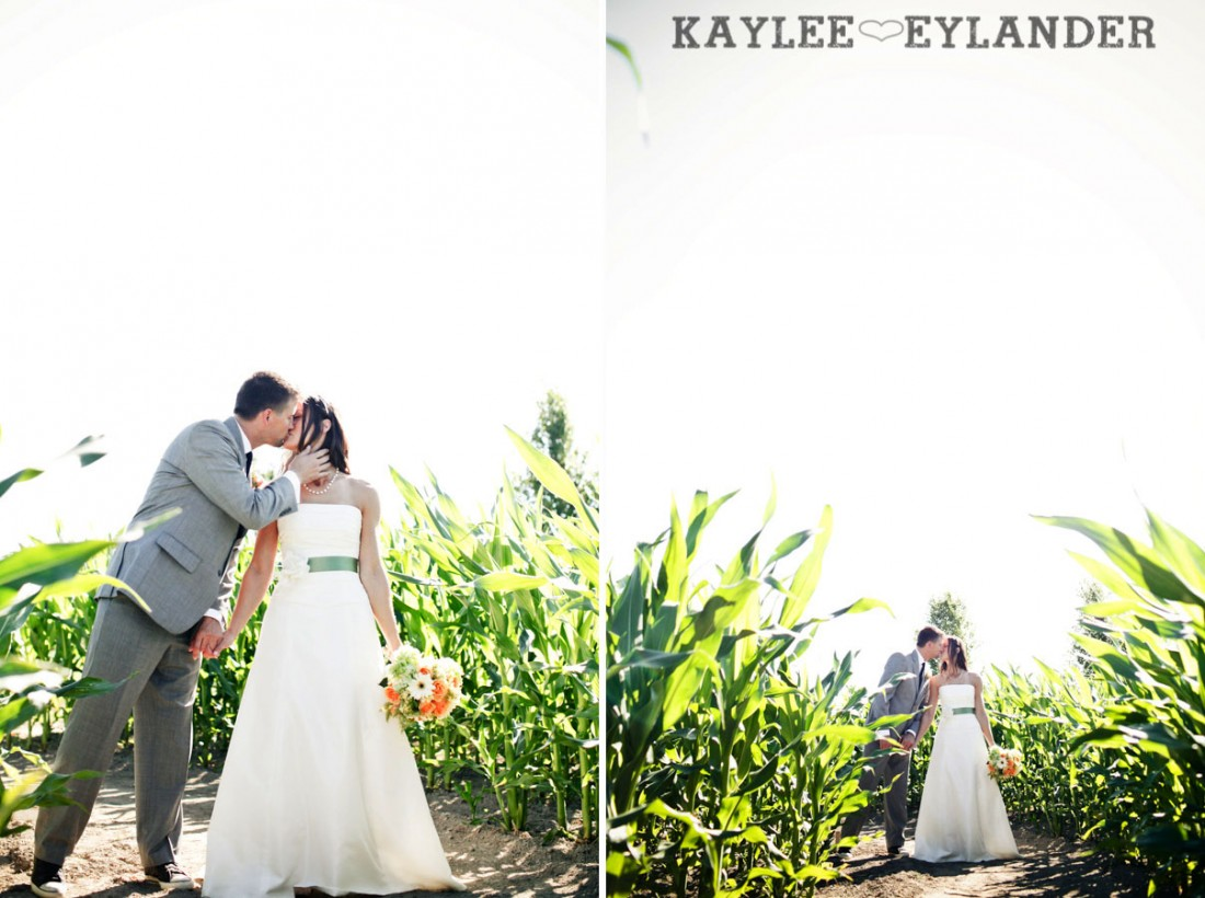 Swans Trail Farm Wedding Photographer 23 1100x820 Swans Trail Farm | Rustic Barn Field Wedding | Sneak Peak