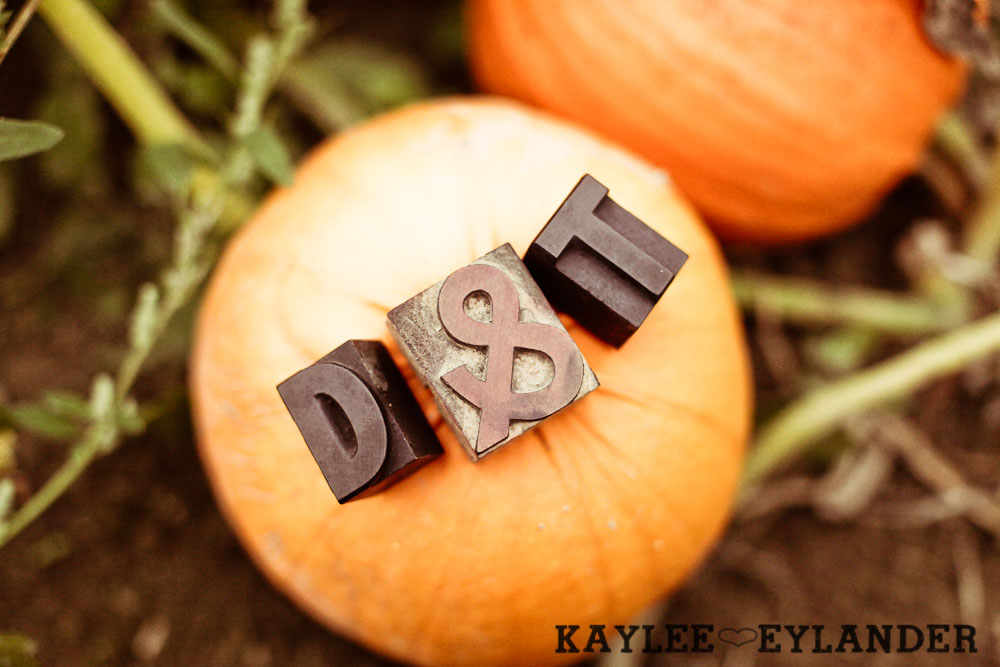 0005 Day After Session at Craven Farm | Fall, Pumpkins and some cute newlyweds!