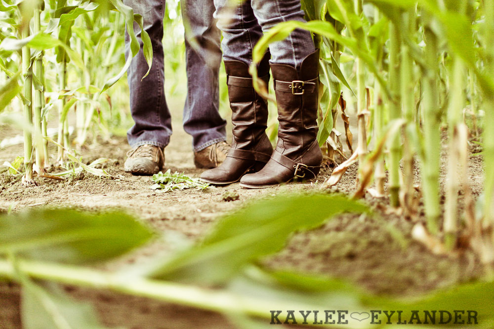 00061 Day After Session at Craven Farm | Fall, Pumpkins and some cute newlyweds!