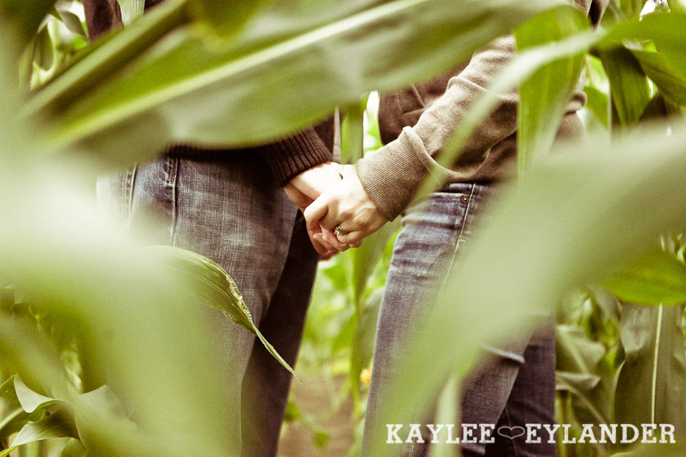 00081 Day After Session at Craven Farm | Fall, Pumpkins and some cute newlyweds!