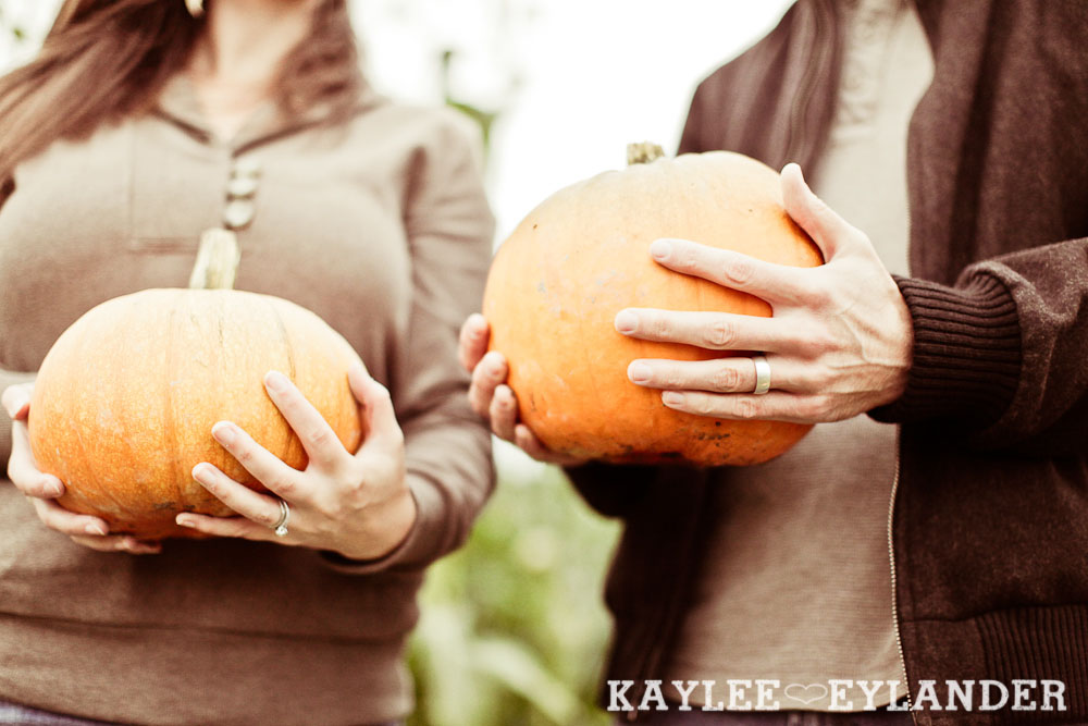 00111 Day After Session at Craven Farm | Fall, Pumpkins and some cute newlyweds!