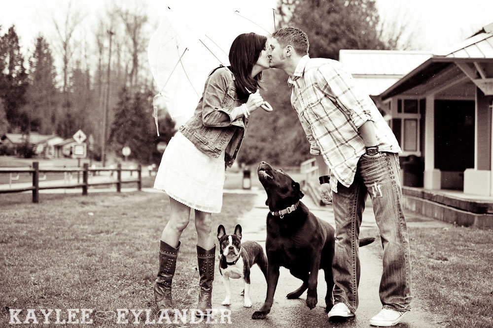 Lake Stevens Modern Engagement 22 Engagement Session with the Boys (AKA The lab and French Bulldog)