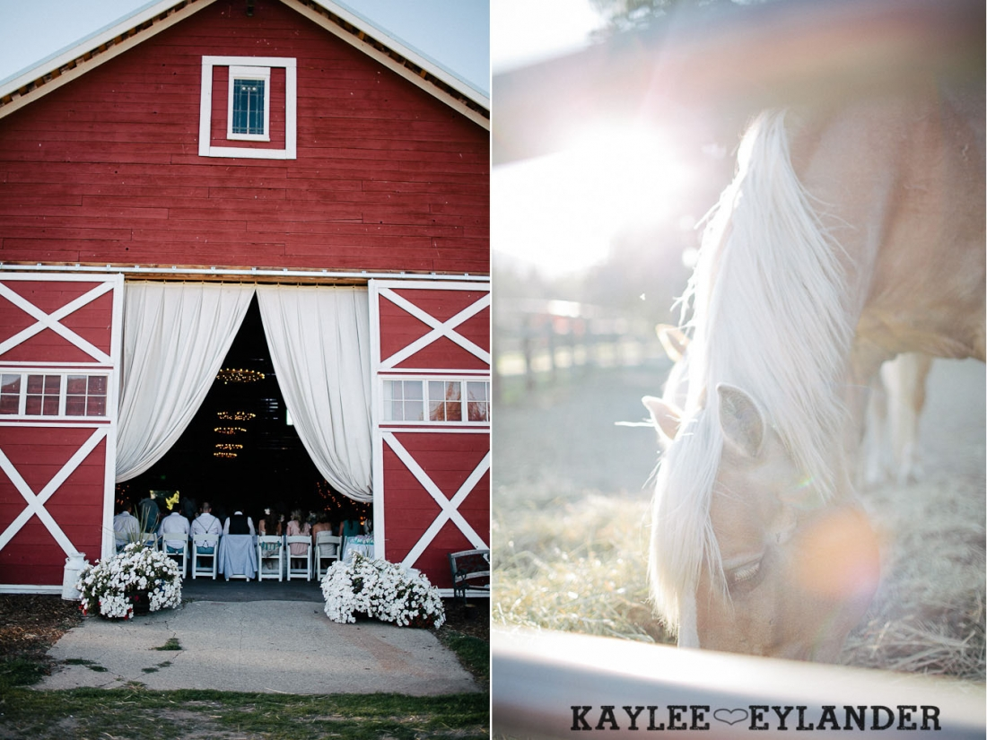 Ritter Farms Cle Elum DIY Wedding Reception 20 1100x825 Ritter Farms DIY Wedding | Cle Elum Wedding | Turquoise Piano in a field...need I say more?