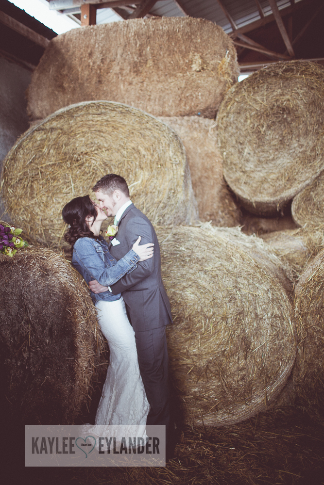 swans Trail Farm DIY Wedding 60 Swans Trail Farm Wedding | Washington Farm Weddings