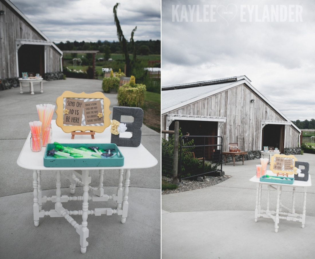 Swans Trail Farm Snohomish Wedding 17 1100x906 Swans Trail Farm Wedding | DIY Farm Wedding