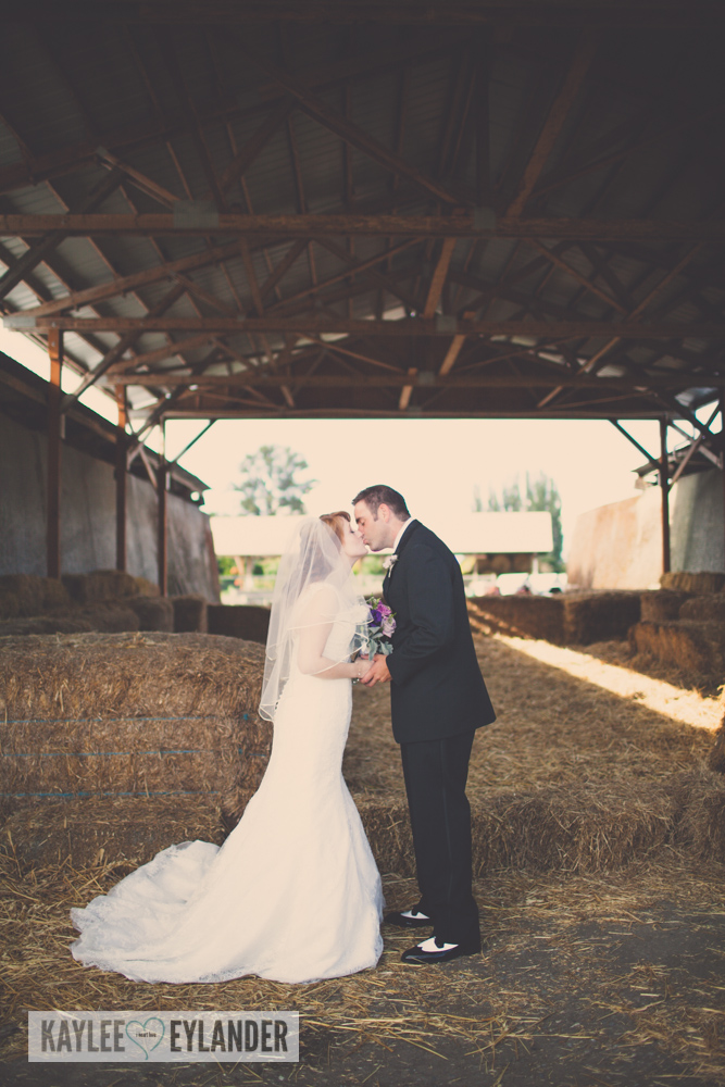 Swans Trail Farm Wedding 15 Copy Swans Trail Farm Wedding | Tri Cities Wedding Photographer
