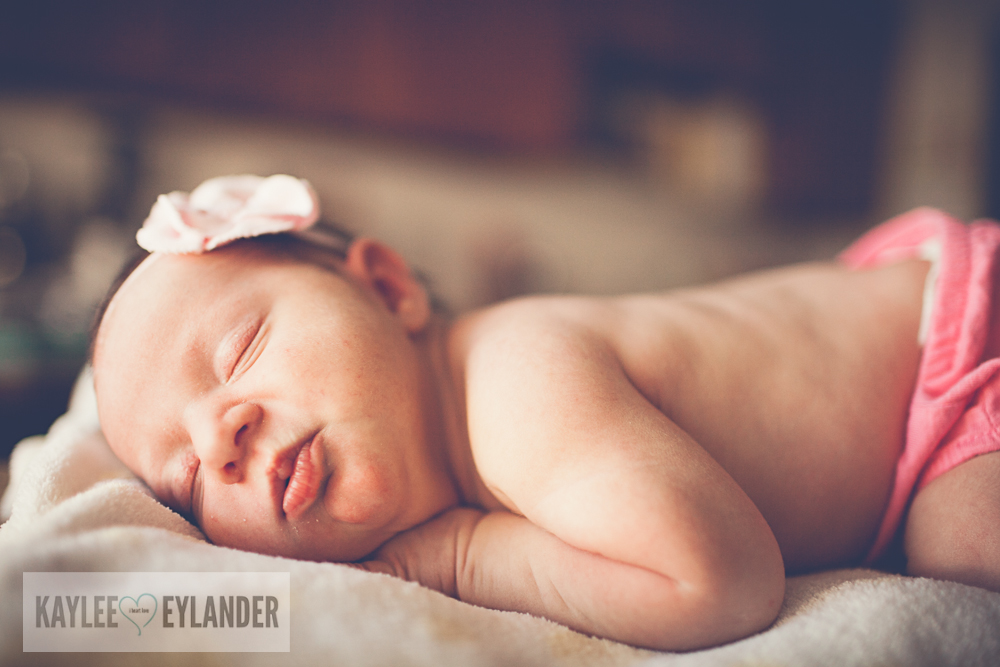 Tri Cities newborn photographers 4 Baby Anna | Tri Cities Newborn Photographer