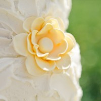 005 diy yellow rustic wedding 1308242936 200x200 Portfolio