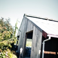 Rustic Barn Wedding 17 200x200 Portfolio