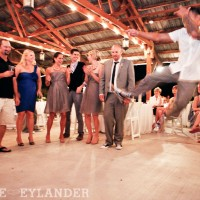 Swans Trail Farm Barn Snohomish Wedding Reception 41 200x200 Portfolio